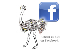 Facebook profile for The Curious Ostrich